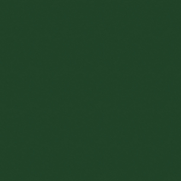 7191 BS Ever Green
